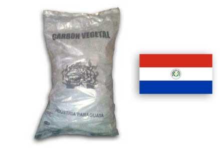 paraguaia